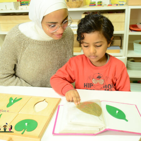 برنامج دبلوم منتسوري من سن 6 : 9 سنوات (Lower Elementary)- رقم الكود 503